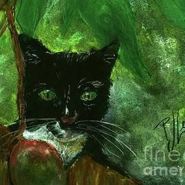 PJ Lewis - Mango kitty