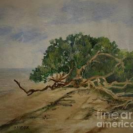 Barbara Moak - Mangroves Along the Shoreline