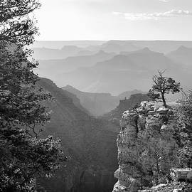 Gregory Ballos - Many Shades of Grey - Grand Canyon Arizona - Black and White