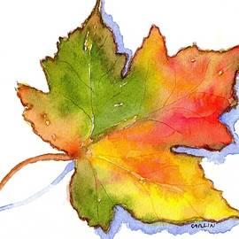 Carlin Blahnik - Maple Leaf Turning