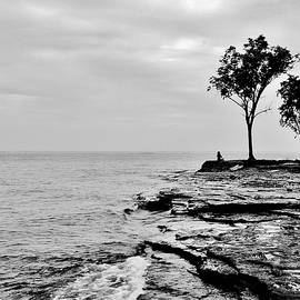 Marblehead Zen by Daniel Thompson