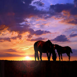 Rod Seel - Mare and Foal