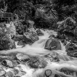 Marian Cascade New Zealand BW by Joan Carroll