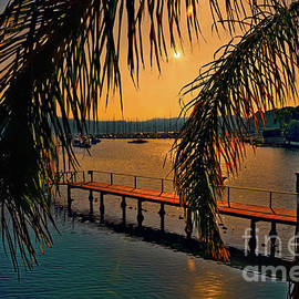 Kaye Menner - Marina Palm Sunset by Kaye Menner