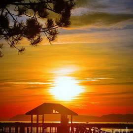 Everett Marina sunset by Loretta Bueno