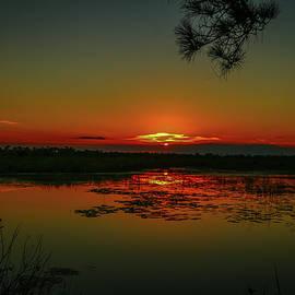 Tom Claud - Marsh Sunset