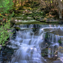 Ron Christie - Martin Brook Falls