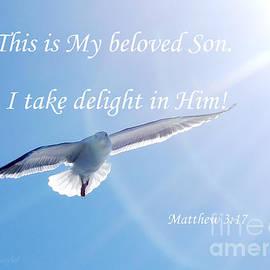 Matthew 3  17