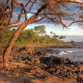 Bryan Keil - Maui beach