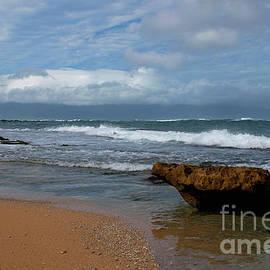 Maui Beach  by Ivete Basso Photography