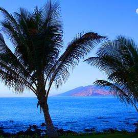 Michael Rucker - Maui CoastLine