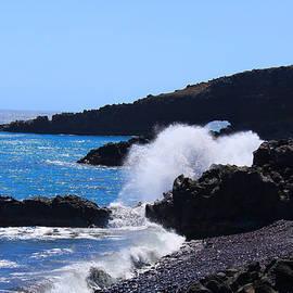 Michael Rucker - Maui Island Cove