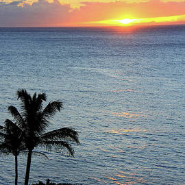 Maui Meditation by Michele Hancock
