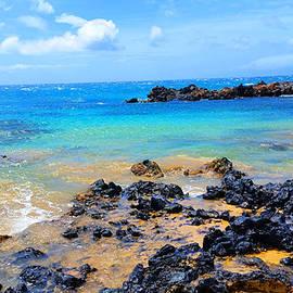 Michael Rucker - Maui Shoreline