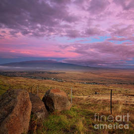 Mauna Kea and Hualalai Sunset by Charmian Vistaunet