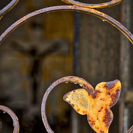 Stuart Litoff - Mausoleum Door Details #2 - Buenos Aires
