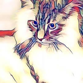 Maggie Vlazny - Max the Cat