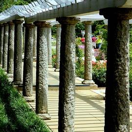Maymont's Italian Garden - I by Arlane Crump