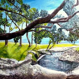 Irving Starr - McCoy Creek