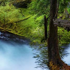 McKenzie River from Sahalie Falls - Cat Connor