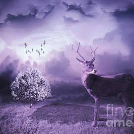 KaFra Art - Meadow Deer