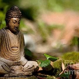 Meditation by Jean Bernard Roussilhe