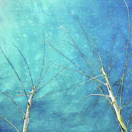 Terry Davis - Meeting in Winter