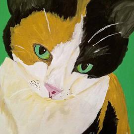 Megans_kitty_dwp_2016 by Ania M Milo