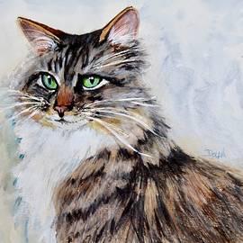 Melissa's Cat by Pat Dolan