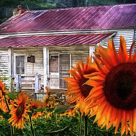 Debra and Dave Vanderlaan - Memories of Home