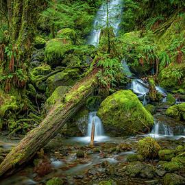 Mike Penney - Merriman Falls 7
