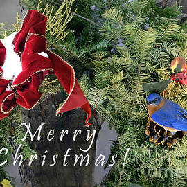 Nava Thompson - Merry Christmas Wreath