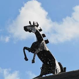 Maciek Froncisz - Metal Horse Statue
