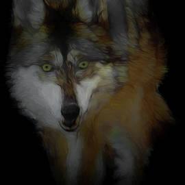 Ernie Echols - Mexican Grey Wolf DA2