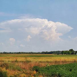 Kathi Mirto - Michigan Farmland