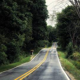 Thomas Woolworth - Michigan Rural Roadway In September