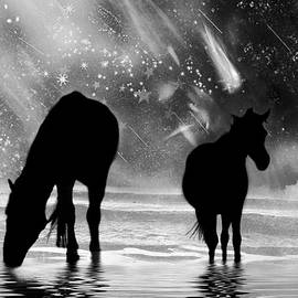 Midnight Horses at the Beach Black and White by Peggy Collins