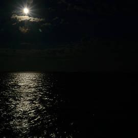 Srinivasan Venkatarajan - Midnight Sun