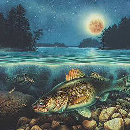Midnight Walleye by Jon Q Wright