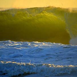 Dianne Cowen - Mighty Ocean at Sunrise