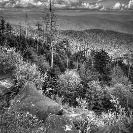 Mile High Blue Ridge Parkway Great Smoky Mountains Art by Reid Callaway