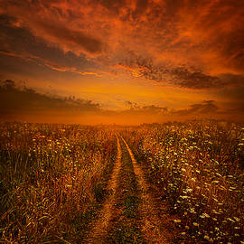 Miles and Miles Away by Phil Koch