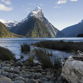 Milford Sound  New Zealand by Michael Treloar