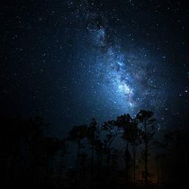 Mark Andrew Thomas - Milky Way at Big Cypress National Preserve