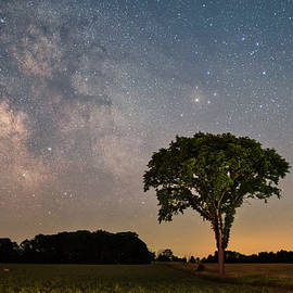 Milky Way over Lone Tree by Dustin Goodspeed