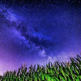 Dan Sproul - Milky Way Over Ohio Field