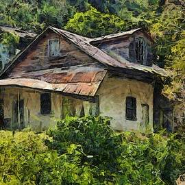 Miner's house being reclaimed by the jungle by Lew Marcrum