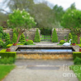 John Cladefield - Miniature garden