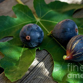Mission Figs With Fig Leaf by Sharon Foelz