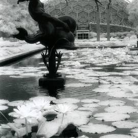 Missouri Botanical Gardens by Jane Linders